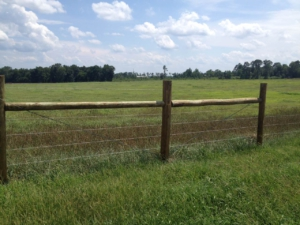 cattle-fencing