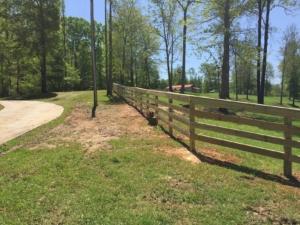 horse-fencing2