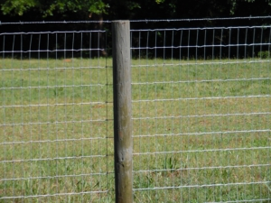 wire-fencing-with-barbed-wire